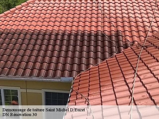 Demoussage de toiture  saint-michel-d-euzet-30200 Rudy couverture