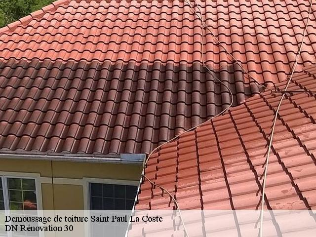 Demoussage de toiture  saint-paul-la-coste-30480 Rudy couverture