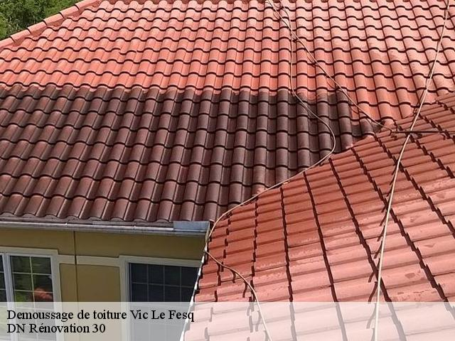 Demoussage de toiture  vic-le-fesq-30260 Artisan Mathurin