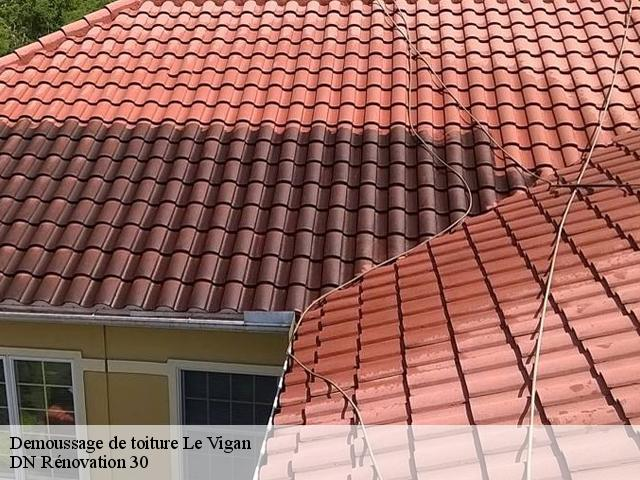 Demoussage de toiture  le-vigan-30120 Rudy couverture